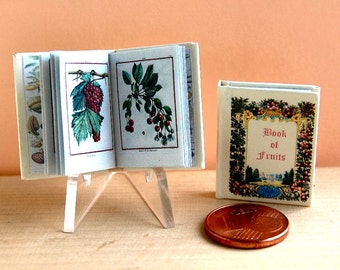 Book of Fruits Miniature book 1/12