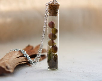 vial necklace botanical preserved specimen corked sage green moss dried berries. natural nature. tree woods