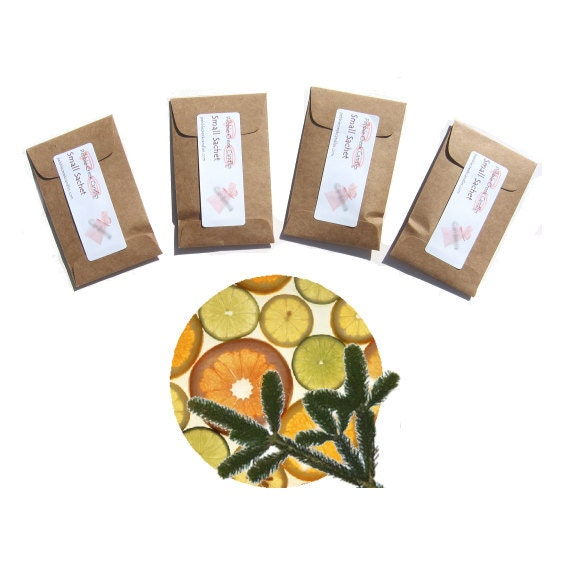 Sachets Scented Citrus Pine Rustic Baby Shower Favors Winter Wedding Naturalist Thank You Gift for Guests Kraft Seed Packets Personalized