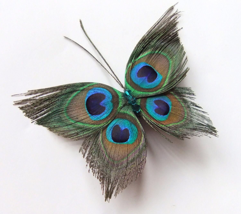 Single Peacock Feather Clip Art Butterfly peacock wedding hair