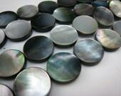 black lip shell flat coin 15mm 15 inch strand