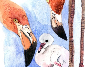 ACEO Limited Edition 1/25- Flamingos, in watercolor