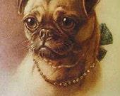Antique Sepia Pug Photo Decoupaged on Wood