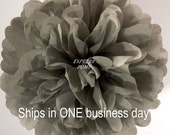 Gray Tissue Paper Pom Pom - 1 Medium Pom - 1 Piece - Ships within ONE Business Day - ExpressPoms