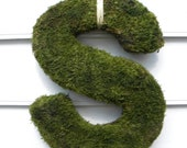 Moss Covered Inital Letter