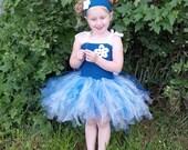 Fairy Princess Dress (5T)
