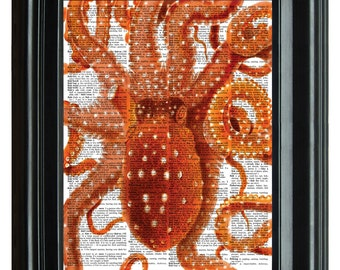 Octopus Vintage Print, VINTAGE DICTIONARY PRINT, dictionary page, Upcycled dictionary art print,  8.25x11.25 num. 43