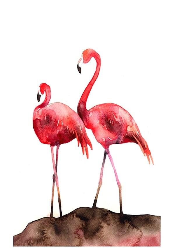 Flamingos bird watercolor illustration by barbaraszepesiszucs for Flamingo feather paint