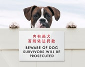 Funny Sign Fail. Chinglish Humor. Survivors will be Prosecuted
