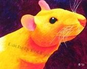 Yellow Rat Painting Pet Rat Art 8x10 Print 11x14 Print Hooded Rat Acrylic Rat Painting Pet Mmorial Custom Pet Painting Small Animal Painting