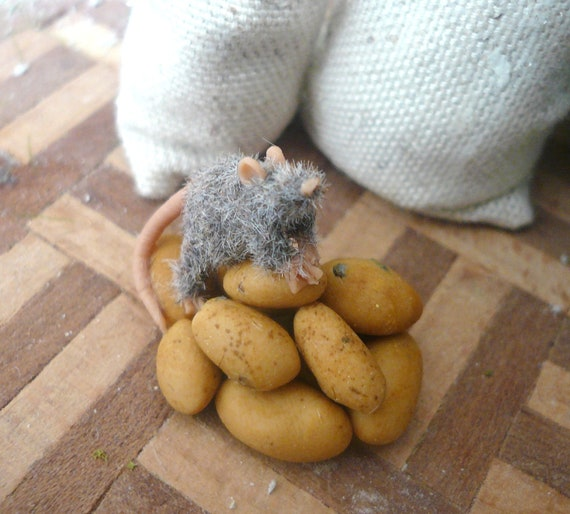 little rat on a stack of potatoes 1:12
