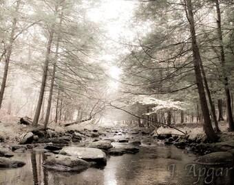 Babbling Brook in Autumn - 8x10 Fine Art Photography Print