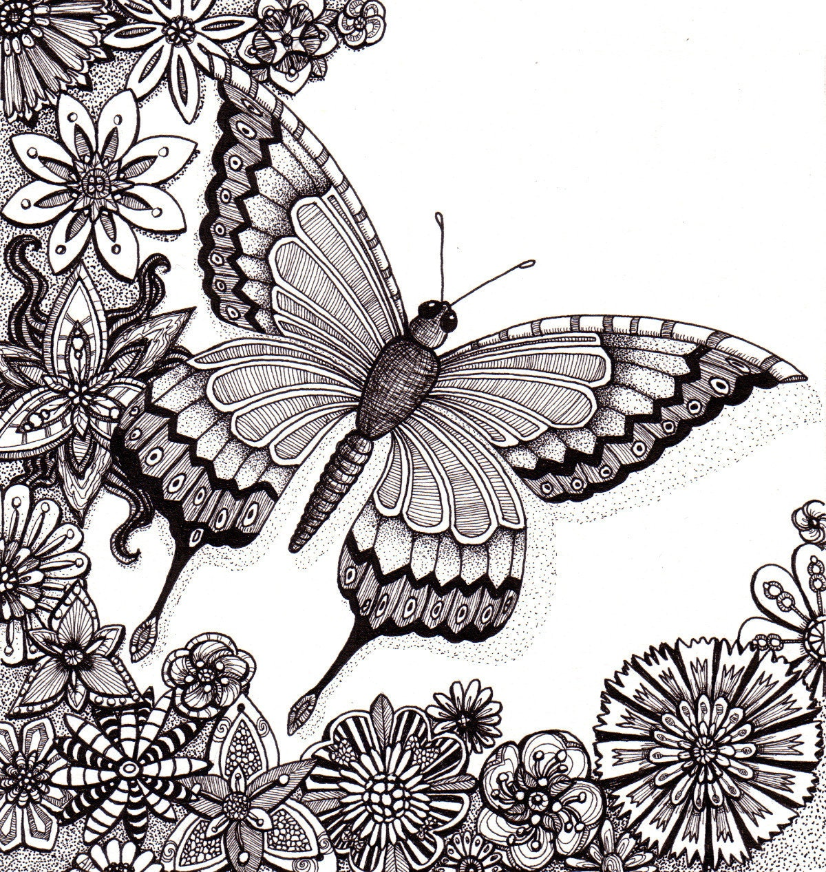 Flutter By Butterfly Beautiful And Original Whimsical