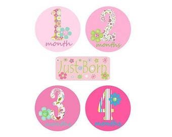 Baby Monthly Iron On Heat Transfers - Bright Flowers and Numbers  Y1  Plus JUST BORN