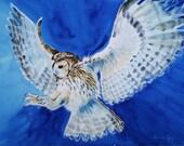Owl, bird art, owl art, Original watercolour painting, 11x15 inches