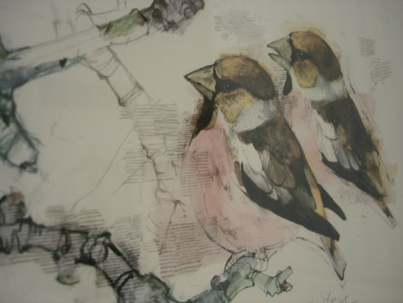 Mads Stage Bird Print - Pencil and Watercolour Picture of a Hawfinch