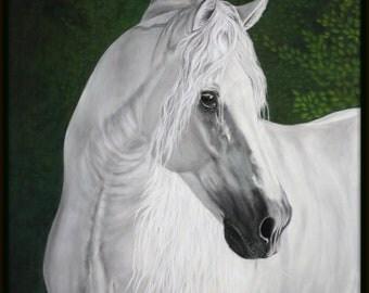 Horse Portrait  get your horse's portrait in pastel