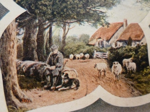 Greetings from Holton Kans. from the Shepherd and his flock...   1909 vintage card