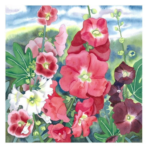 Botanical Flower Watercolour Hollyhocks - Limited Edition Giclee fine art print