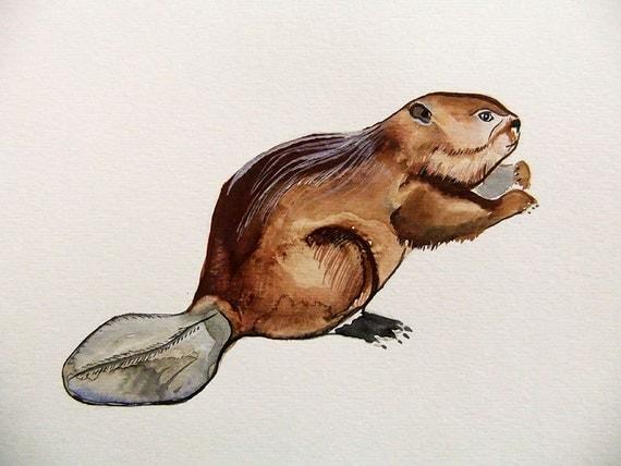 Beaver  -Original Watercolor Painting