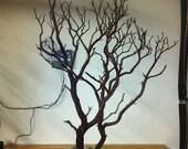 Shipped - 12 DIY manzanita tree Centerpiece