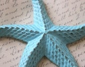 Iron Starfish Paper Weight desk ornament Aqua