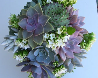 Succulent Wedding Bouquet, Succulent Bridesmaid Bouquet