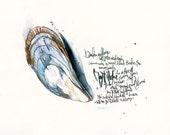 Bivalve mussel  watercolo...