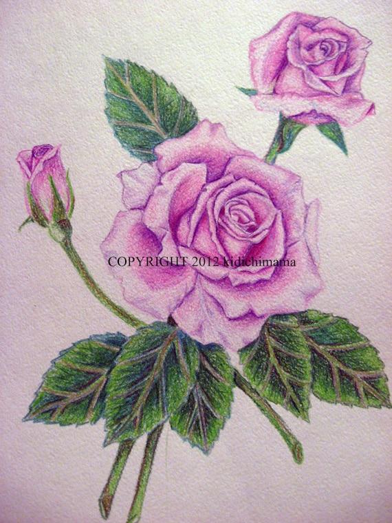 Articoli simili a matita colorata originale rosa disegno for Disegni di fiori a matita