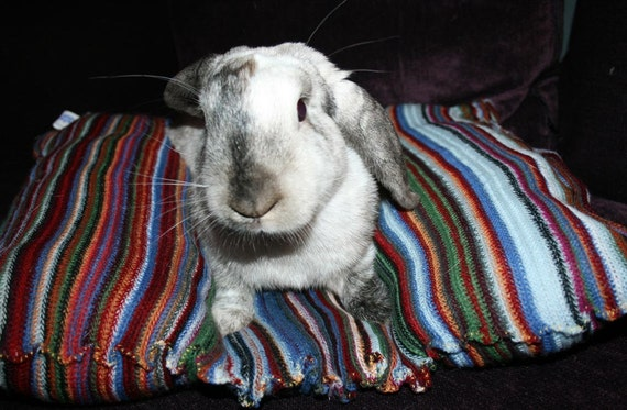 wide Bunny Hugger side by side bunny bed for a medium size rabbit stripes acrylic wool free