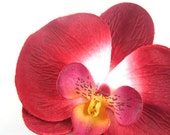 10 Big Red Phalaenopsis Heads Artificial Flower - Silk Flowers - 3.75 inches - Wholesale Lot - for Wedding Work, Make Hair clips