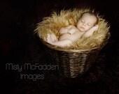 Camel Caramel Carmel Tan Neutral Light Brown Mongolian Faux Fur Photography Photo Prop Newborn-Ready To Ship