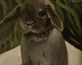 "Bunny Rabbit Mini Lop Fine Art Print - ""Baby goes on a picnic"""
