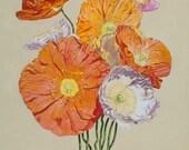 "Poppies-16"" x 20"" ltd. ed. giclee print of original painting"