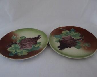 Vintage Pair of Bavarian Still Life Fruit Plates