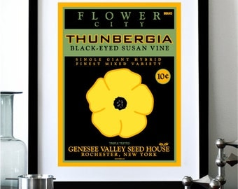 Flower City Rochester NY Thunbergia Black-Eyed Susan Vine Digital Print - 8x10.