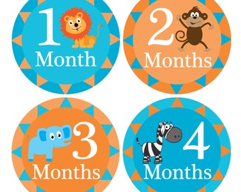 Monthly Milestone Stickers, Monthly Growth Stickers, Monthly Baby Stickers, Baby Monthly Stickers, Animal Month Stickers