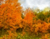 A Touch Of Autumn - Digital Photography, Digital Art, Painting, Photograph, 8x10, Fine Art Print