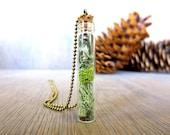 I Cannot Live Without You...Tiny Live Terrarium Pendant Lichen Moss Magic Little Terrarium Necklace