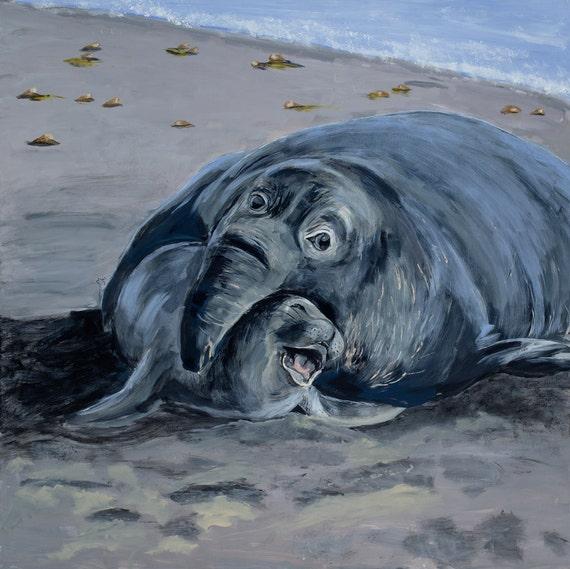 Elephant seal and cub framed print
