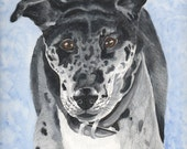 Greyhound Original Artwork Painting