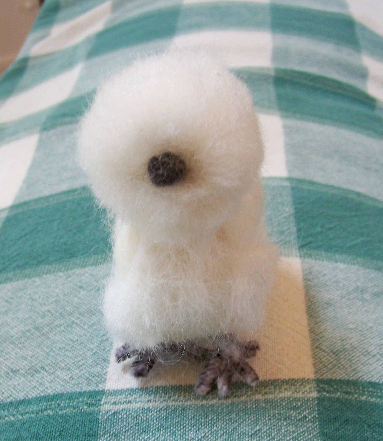 Baby Silkie Chickens