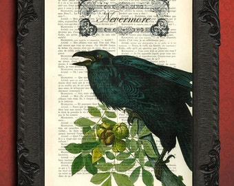 Black bird, The Raven Edgar Allan Poe poster, Nevermore print, bird dictionary art print, recycled upcycled bird decoration