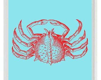 Crab Beach Nautical Sea Creature Art Print Set - Nursery Children Room Kitchen Red Aqua - Wall Art Home Decor