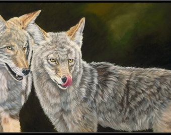 "Matched Pair 9"" x 4.5""  Coyote Pair Print"