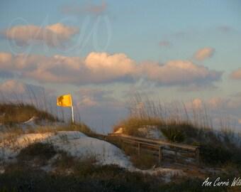 Dunes at first light,St. Joe, Florida (canvas)
