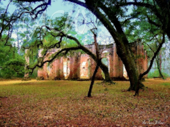Sheldon Church, Yemassee, South Carolina (canvas)