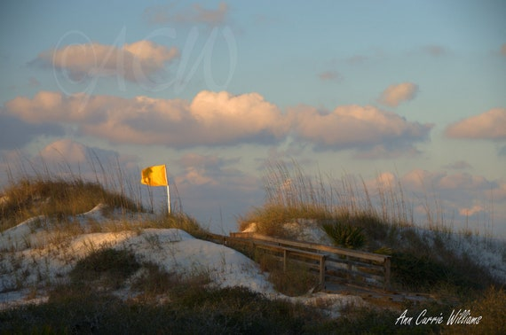 Dunes at first light,St. Joe, Florida (canvas)