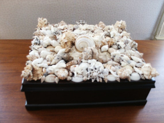 Seashell and Coral Tea Box
