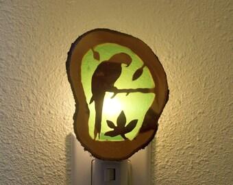 Parrot nightlight